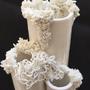 Decorative objects - Invasive coral vase - L'ATELIER DES CREATEURS