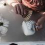Toys - Bath swan - NATRUBA