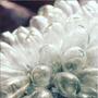 Lampe sans fil - Grappe de verre soufflé  - TADÉ PAYS DU LEVANT