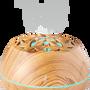 Diffuseurs de parfums - LILYWOOD, diffuseur d'huiles essentielles et enceinte Bluetooth - AROMASOUND - AROMASOUND