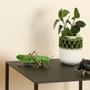 Design objects - Decorative, Ceramic - The stillness of the Grasshopper - LABORATÓRIO D'ESTÓRIAS