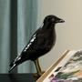 Objets design - Decorative, Ceramic - The Naughty Crow - LABORATÓRIO D'ESTÓRIAS