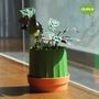 Mobilier et rangements - Micro serre: pot de plantes auto-arrosage pour jardin intérieur et extérieur - QUALY DESIGN OFFICIAL