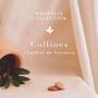 Bijoux - Bracelet médaillon herbier fleur - JOUR DE MISTRAL