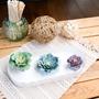 Décorations florales - Kit créatif - Décoration - Les succulentes - FRENCH KITS