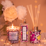 Scent diffusers - Fragrance Bouquet French Pompon • BAIJA PARIS - BAIJA PARIS