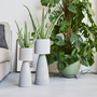 Floral decoration - FORT indoor ceramic pot  - D&M DECO