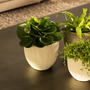 Objets de décoration - SHELL pot céramique intérieur - D&M DECO