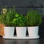 Décorations florales - BASIC pot intérieur - D&M DECO