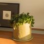 Décorations florales - REPOSE pot céramique d'intérieur  - D&M DECO