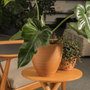 Décorations florales - Mot en céramique d'intérieur - D&M DECO