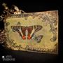 Coffrets et boîtes - Boite Papillon Circus Vintage - ATELIER TAMBONE