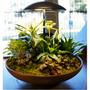 Desk lamps - Abatjour Garden II - GEO LUZ & CÉRAMIQUE